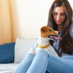 Cuidados básicos para tu nueva mascota