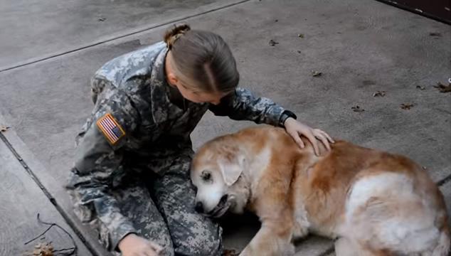 La reacción de la mascota de un soldado cuando éste regresa a casa