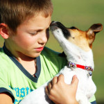 Las 6 mejores razas de perros para familias con niños