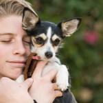 Cómo lidiar con la pérdida de nuestra mascota