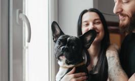 5 <em>tips</em> para consentir a tu mascota en este nuevo año