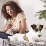 6 tips para visitar al veterinario en tiempos de coronavirus