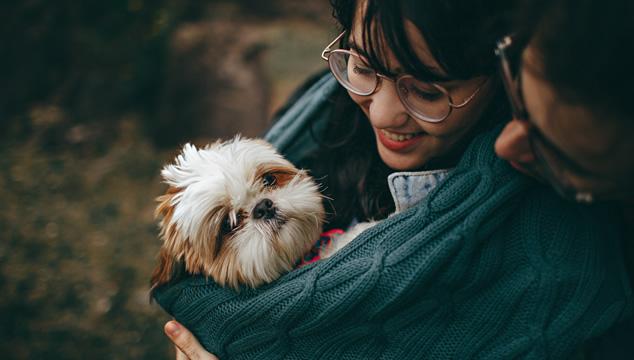 Todo lo que debes saber para adoptar una mascota