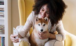 5 beneficios de tener una mascota