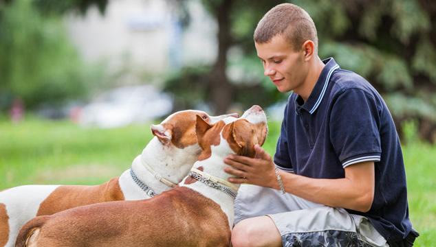 La oxitocina entre perros y humanos