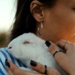 8 tips para ser un dueño de mascota responsable