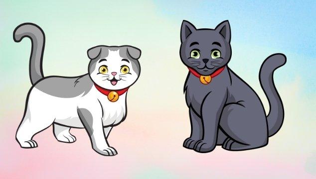 gatos-peliculas